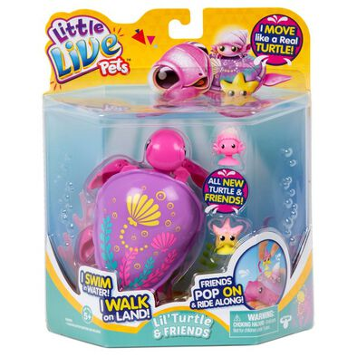 Little Live Pets Turtle S6 Single Pack Shelby The Reef