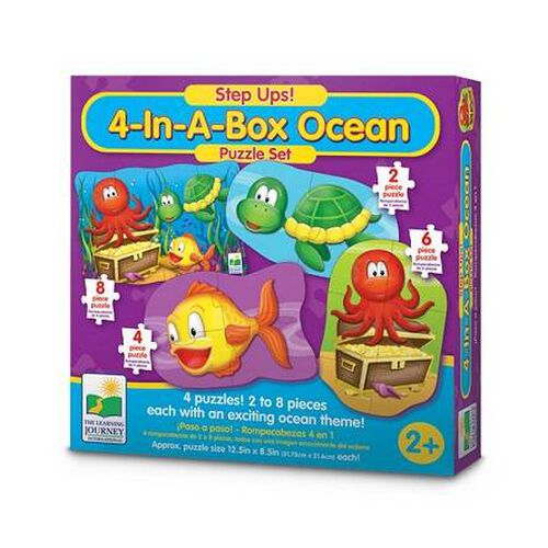The Learning Journey My First 4 In A Box Ocean