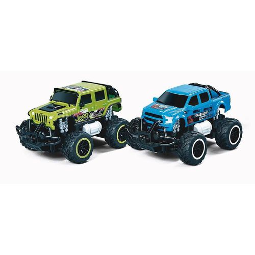 Fast Lane 1-24 R/C Monster Truck - Assorted