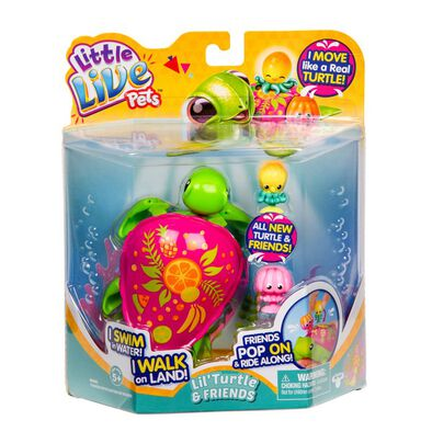 Little Live Pets Turtle S6 Single Pack Fruity The Fruit